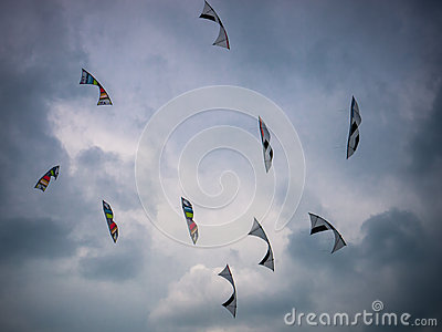 Kites against a dark sky