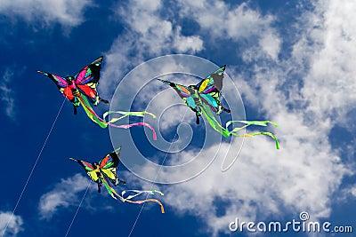 Kites Butterflies