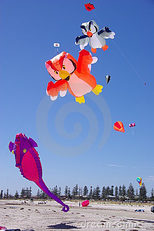 Kites flying over sandy beach Editorial Image