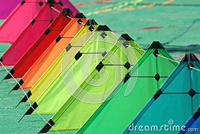 Kites on the ground