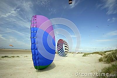 Kites on sand
