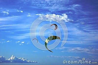 Kites in the skies