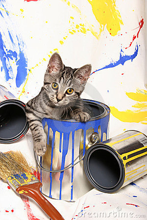 Free Kitten And Paint Cans Royalty Free Stock Photo - 24161255