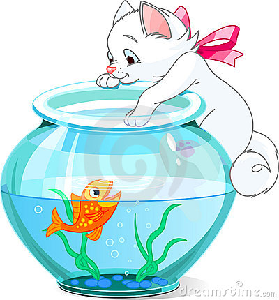 Kitten and fish