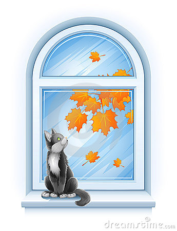 Free Kitten Sitting On Windowsill Of Autumn Window Royalty Free Stock Image - 15694446