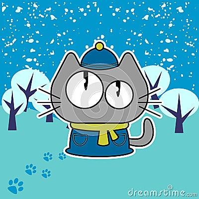 Kitten in winter
