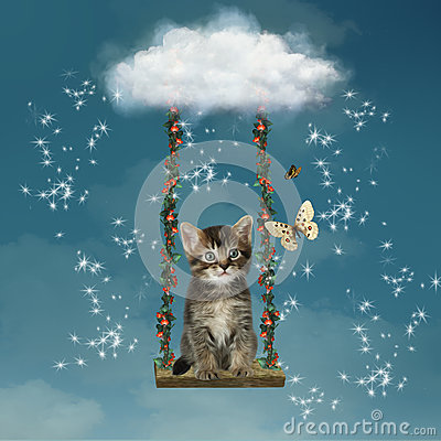 Kitty in the sky