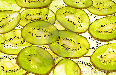 Kiwi Stock Photos - Image: 19504243