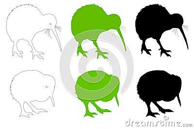 Kiwi Bird Adult & Baby Vector Illustration
