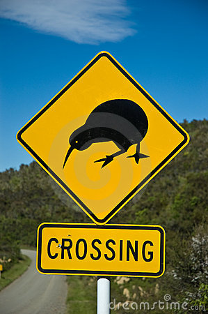 Free Kiwi Crossing Royalty Free Stock Images - 4519679