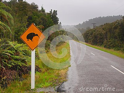 Kiwi Crossing Sign in Rain