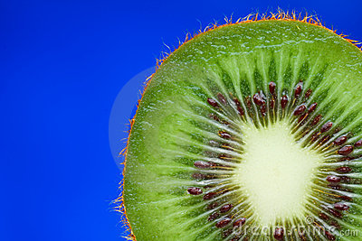 Kiwi Fruit Inside