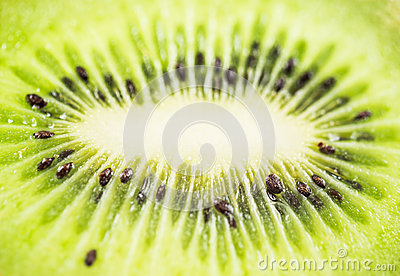 Kiwi Fruit IV