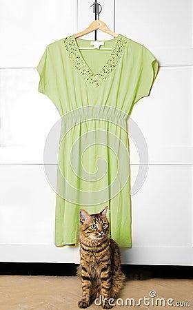 Klä green