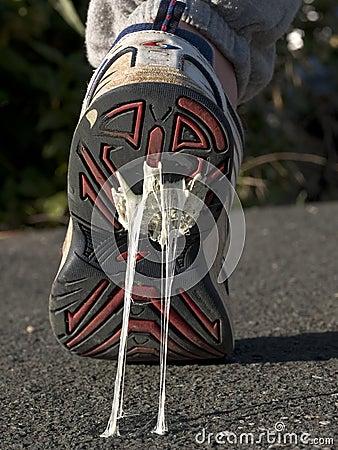 Klebrige Füße