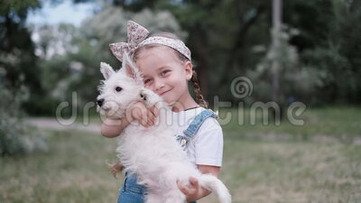 Klein blond meisje met een West Highland White Terrier-puppy in het park stock footage
