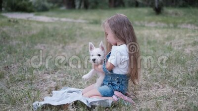 Klein blond meisje met een West Highland White Terrier-puppy in het park stock video