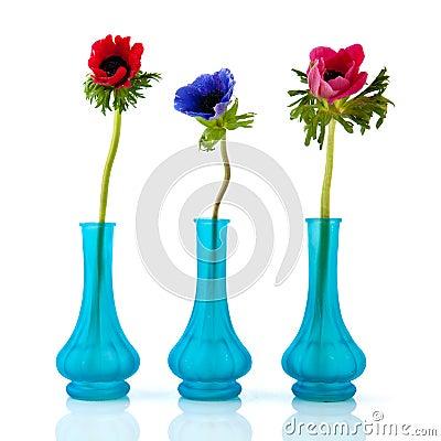 kleine blaue vasen anemonen lizenzfreie stockbilder bild. Black Bedroom Furniture Sets. Home Design Ideas