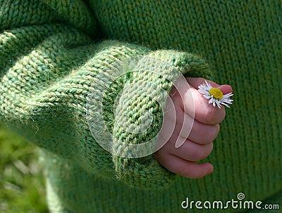 Kleine hand, kleine bloem