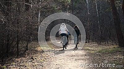 Kleine Kinder, drei Mädchen reiten ein Fahrrad im Herbstpark Aktive Kinder und Mädchenschwestern mit Fahrrädern Langsame Bewegung stock video