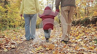 Kleinkindjunge, der mit Großeltern im Herbst geht stock video