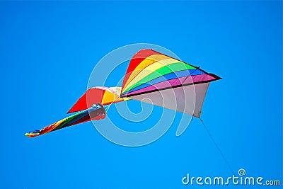 Kleurrijke Vlieger