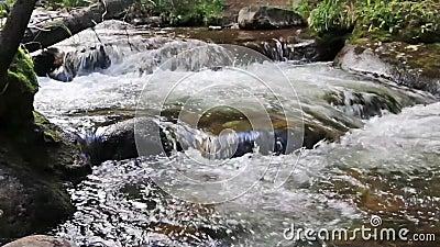 Kliva för bergström - ner några stenblock arkivfilmer