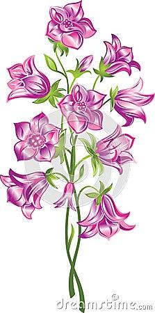 Klocka blomma