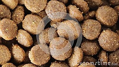 Knapperige koekjes voor honden stock footage