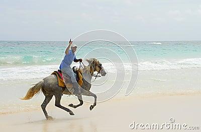 Knight s Caribbean paradise