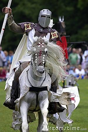 Free Knights Jousting Warwick Castle England Uk Stock Images - 205304