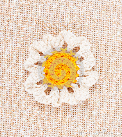 Knitted daisy flower