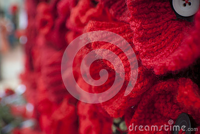 Knitting Pattern For Anzac Day Poppies : Knitted Red Poppy Anzac Day Remembrance Day Stock Photo ...