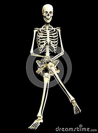 Knochen 3+9