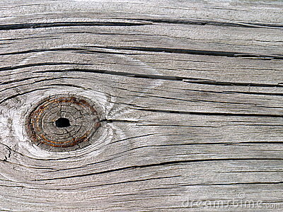 Knothole in Barn Wood Plank