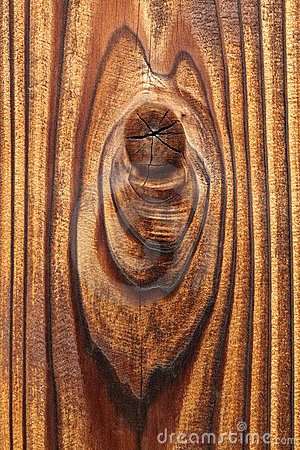 Knotted wood texture