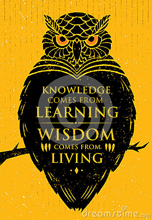Knowledge Comes From Learning. Wisdom Comes From Living. Inspiring Creative Motivation Quote. Owl Vector Banner Vector Illustration