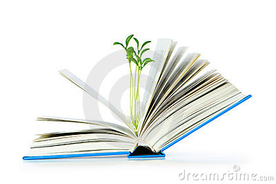 Knowledge concept with books
