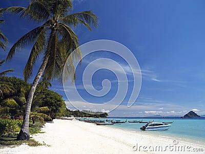 Ko Phi Phi Island near Phuket - Thailand