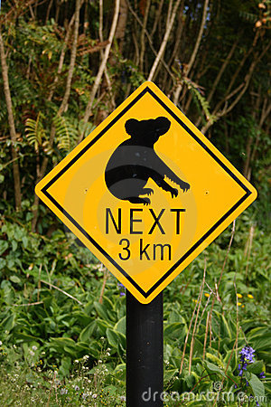 Koala bear sign