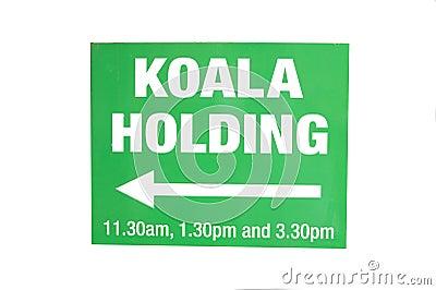 Koala Holding Sign
