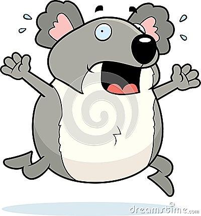 Koala Panic