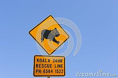 Koala warning sign