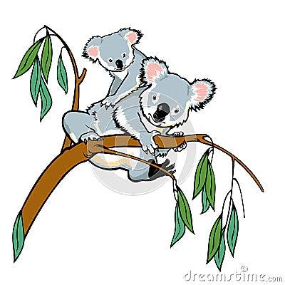 Free Koala With Joey Stock Images - 26460514