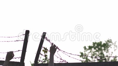 Kobiet ręki trzyma znaka niebezpieczeństwo klatka i chwyta i - drutu kolczastego metalu ogrodzenie w wieczór godziny złotym zmier zdjęcie wideo