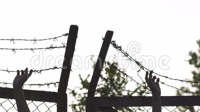 Kobiet ręki trzyma znaka niebezpieczeństwo klatka i chwyta i - drutu kolczastego metalu ogrodzenie w wieczór godziny złotym zmier zbiory wideo