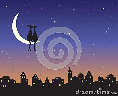 Kochająca kot księżyc dwa