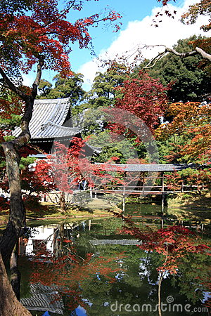 Kodaiji temple garden in autumn