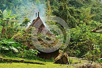 Kogi Hut in Colombia