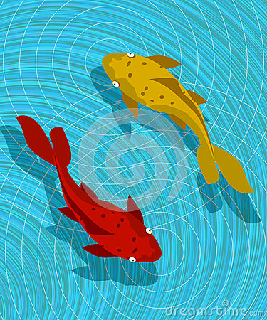 Koi fish scene